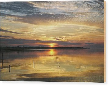 Wood Print featuring the photograph April Reflections by Michele Kaiser
