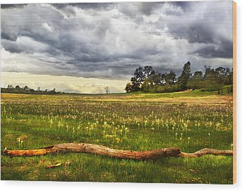 April Showers Bring May Flowers Wood Print