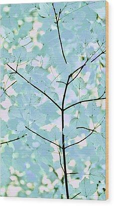 Aqua Blues Greens Leaves Melody Wood Print by Jennie Marie Schell