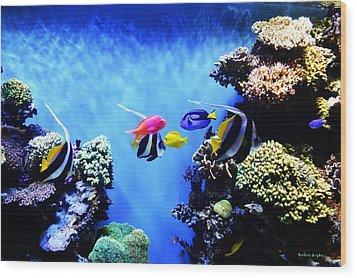 Aquarium 1 Wood Print by Barbara Snyder