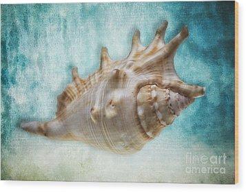 Aquatic Dreams I Wood Print by George Oze