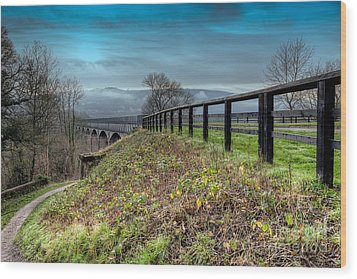Aqueduct At Pontcysyllte Wood Print by Adrian Evans