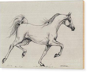 Arabian Horse Drawing 31 Wood Print by Angel  Tarantella