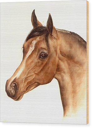 Arabian Horse Head Study Wood Print by Julia Sweda