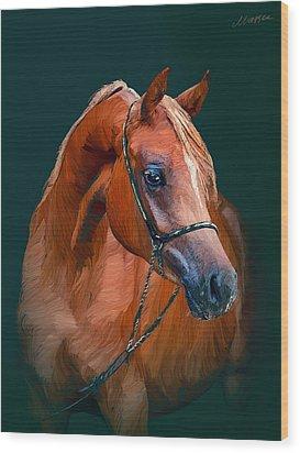 Arabian Horse Wood Print by Marina Likholat