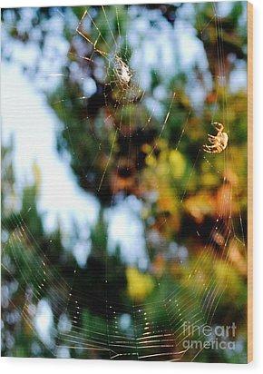 Arachnid Art Wood Print