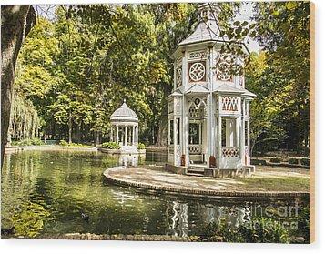 Aranjuez Park Lake Wood Print
