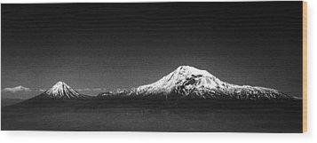 Ararat Mountain Wood Print by Hayk Shalunts