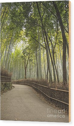 Arashiyama Kyoto Japan Wood Print by Colin and Linda McKie