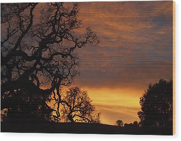 Arastradero Open Space Preserve Sunset Wood Print by Priya Ghose
