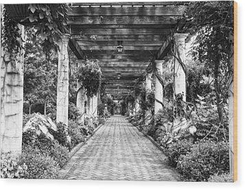 Arbor Walkway Wood Print by Phyllis Peterson