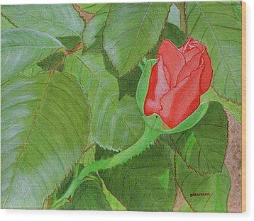 Arboretum Rose Wood Print