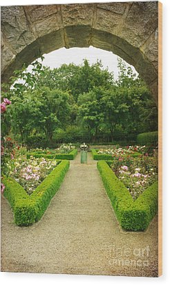 Wood Print featuring the photograph Arch To The Rose Garden by Maria Janicki