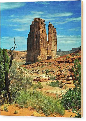Arches 23 Wood Print by Marty Koch