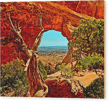 Arches National Park Wood Print by Bob and Nadine Johnston