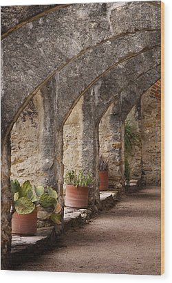 Arches Of San Jose Wood Print by David and Carol Kelly