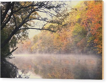 Wood Print featuring the photograph Arching Tree On The Current River by Marty Koch