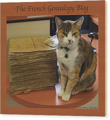 Archives Cat With Fgb Border Wood Print by A Morddel