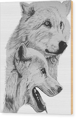 Arctic Wolves Drawing Wood Print by Catherine Roberts