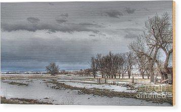 Ardmore Prairie Wood Print by Bill Gabbert