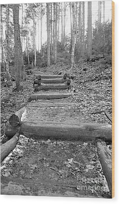 Arethusa Falls Mountain Trail Wood Print by Catherine Reusch Daley