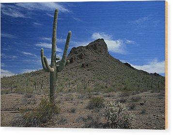 Arizona Cacti   Wood Print by Scott Cunningham