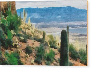 Arizona Desert Heights Wood Print by Michelle Calkins