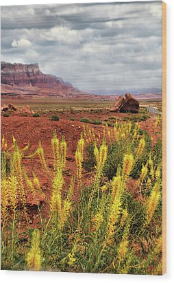 Wood Print featuring the photograph Arizona Landscape by Barbara Manis