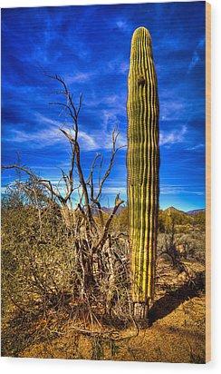 Arizona Landscape IIi Wood Print by David Patterson