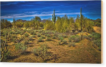 Arizona Landscape Iv Wood Print by David Patterson