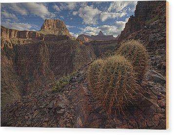 Arizona Morning Wood Print by Kiril Kirkov