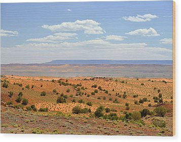 Arizona Near Canyon De Chelly Wood Print by Christine Till
