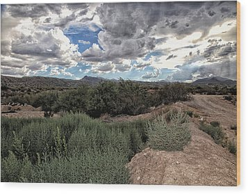 Arizona Rain Wood Print by Joyce Isas