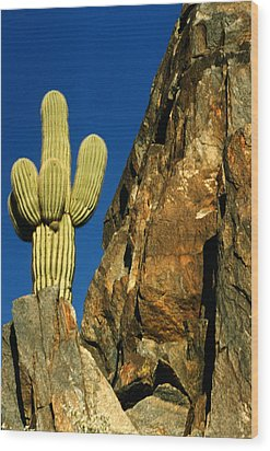 Arizona Sagauro Cactus Wood Print