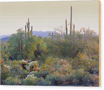 Arizona Spirit Wood Print
