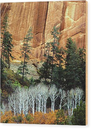 Arizona's Betatkin Aspens Wood Print