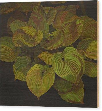 Arkansas Green Wood Print by Thu Nguyen