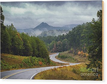 Arkansas Logging Road  Wood Print