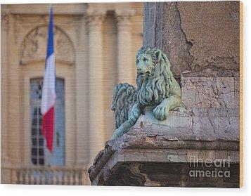Arles Place De La Republique Wood Print by Brian Jannsen