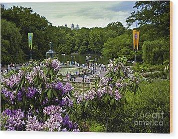 Around Bethesda Fountain Wood Print by Madeline Ellis