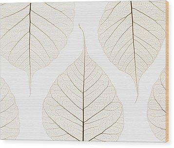 Arranged Leaves Wood Print by Kelly Redinger