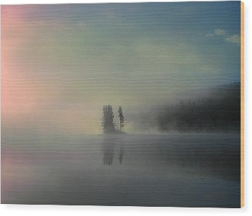 Arrival Of Dawn Wood Print by Shirley Sirois