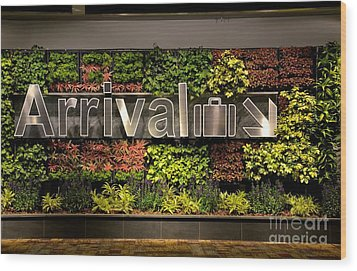 Arrival Sign Arrow And Flowers At Singapore Changi Airport Wood Print by Imran Ahmed