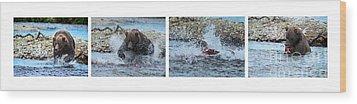 Art Of Catching Salmon  Wood Print by Dan Friend