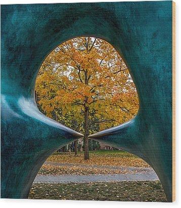 Wood Print featuring the photograph Art X 3 by Glenn DiPaola
