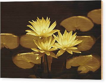 Artistic Gold Tone Water Lilies Wood Print by Linda Phelps