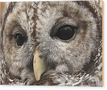 Arts Gentle Expression Wood Print