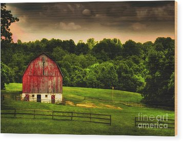 As Darkness Falls Wood Print by Lois Bryan