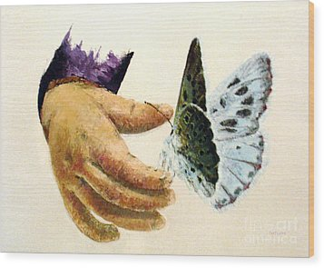As Delicate As A Butterfly  Wood Print by Tatjana Popovska
