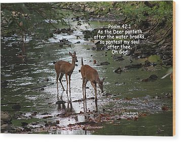 Wood Print featuring the photograph As The Deer Pants For Water by Lorna Rogers Photography